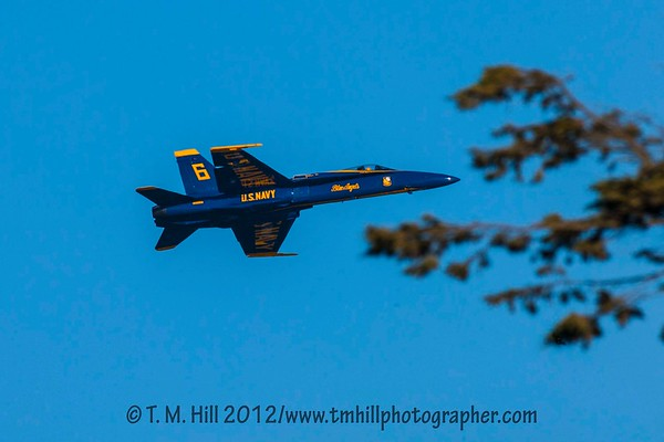 2D1P5898©tmhill2012