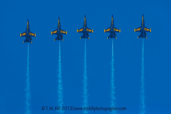 2D1P5842©tmhill2012