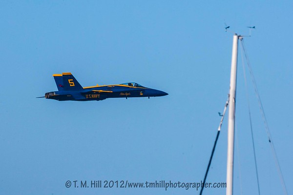 2D1P5873©tmhill2012