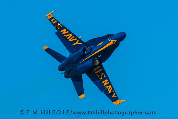 2D1P5929©tmhill2012