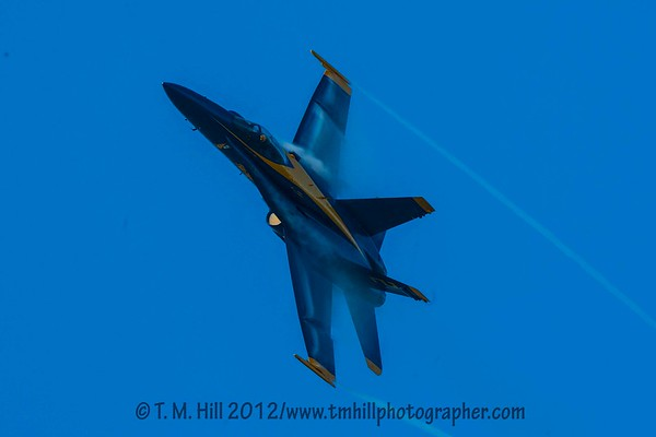 2D1P5957©tmhill2012