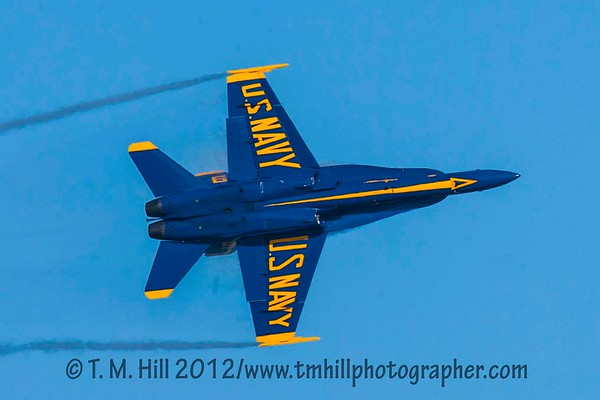 2D1P5894©tmhill2012