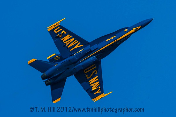 2D1P5941©tmhill2012