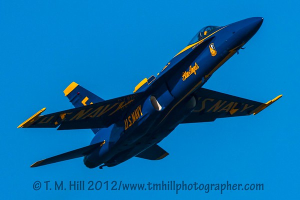 2D1P5932©tmhill2012