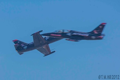 2D1P1689©tmhill2012