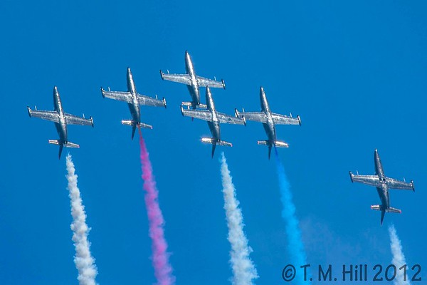 2D1P1594©tmhill2012