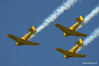 Harvards at Tillsonburg Regional Airport.