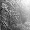 Frozen Air