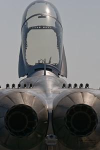 EAA - 2008