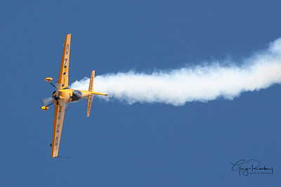 EAA-2013