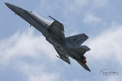 Rockford Airshow - 2009