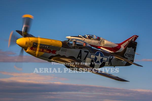https://www.aerialperspectives.org/Site-Folder/Never-Miss-Czechmate-52315/