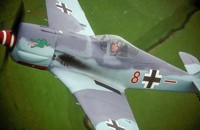 Focke Wulf 190 replica.