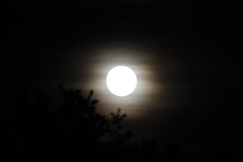Lune en robe brume