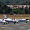 Piaggio P-166DP-1 <br /> Guardia di Finanza (Italian Customs Police)<br /> Malaga Airport<br /> 27/06/2015