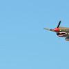 P40 Warhawk Panoramic