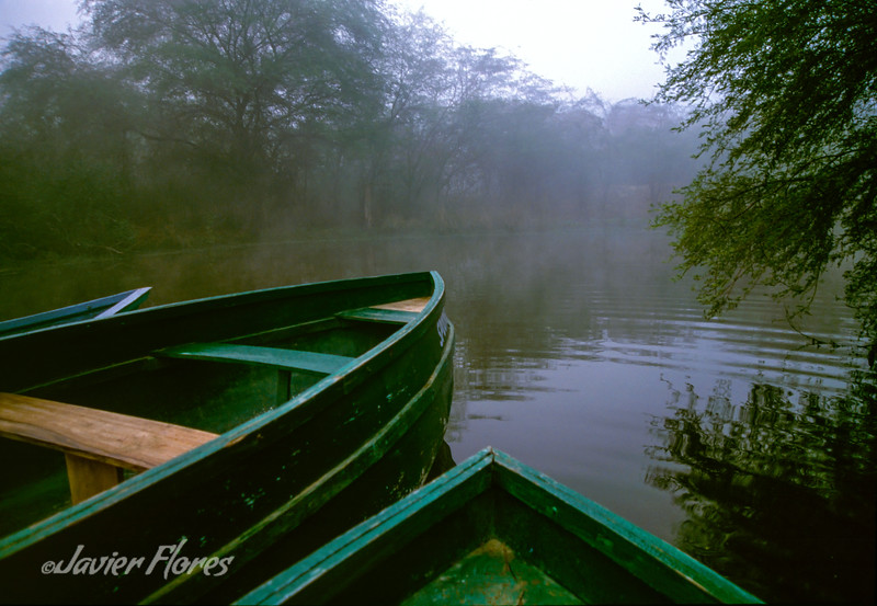 Boats in a Foggy River
