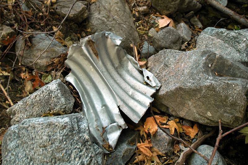 This piece of tin roofing made me stop and check it out. From a disance it looked like an airplane piece.