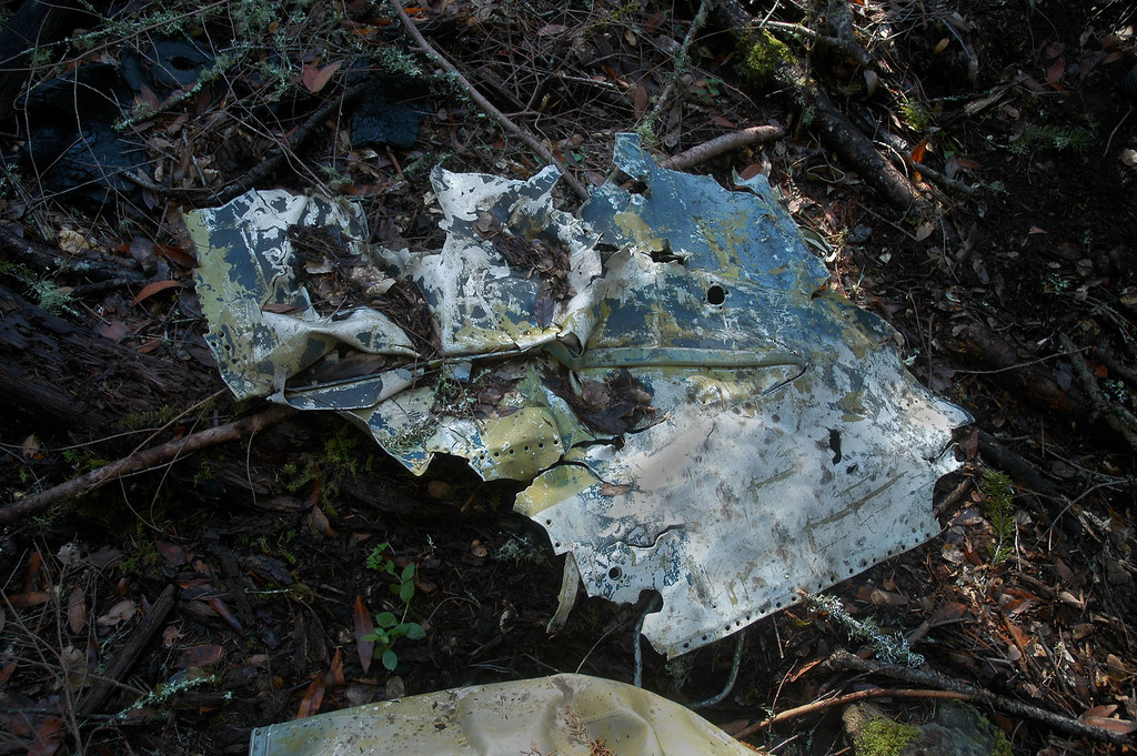 This piece of skin from the fuselage has the trailing edge of the wing fairing on it.