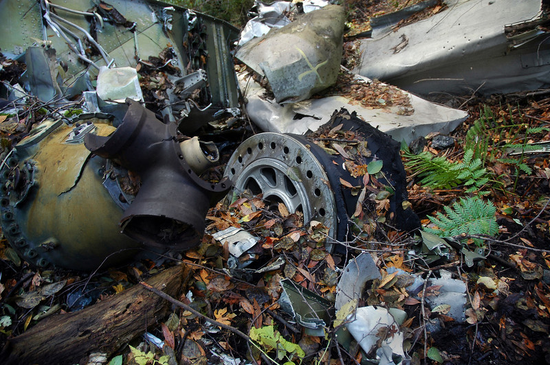 The main landing gear was laying next to the engine. Here the wheel can be seen beside the prop hub.