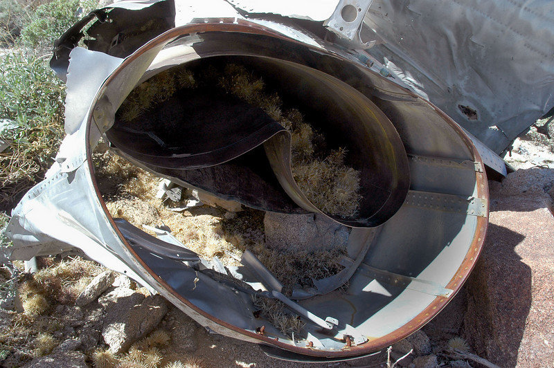 Looking up the smashed tail pipe. The stuff inside are pieces of cholla cactus, must have been put there by pack rats.