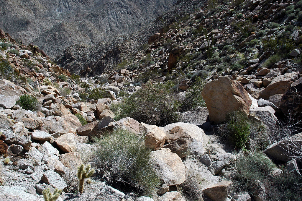 Looking down the steep canyon.