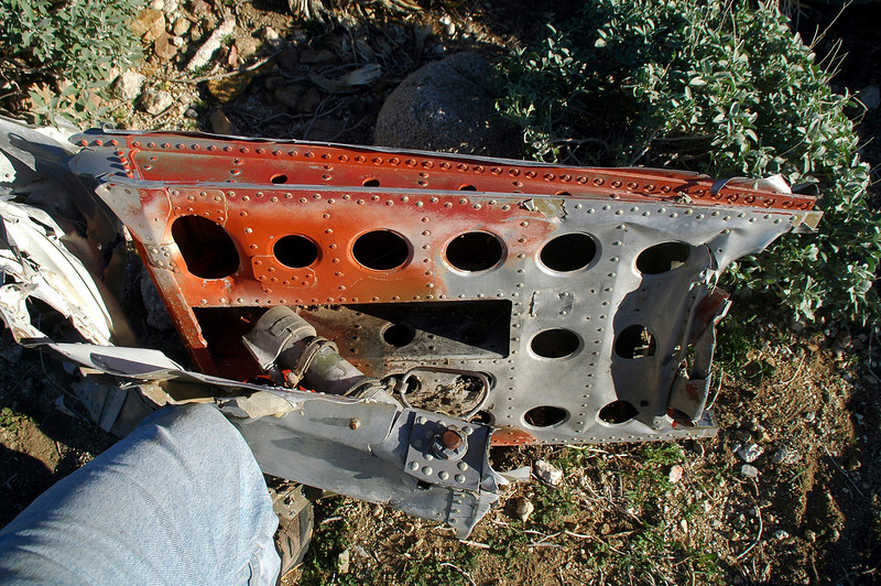When I took a closer look I could tell that it was one of the airbrakes. The actuator was still attached.