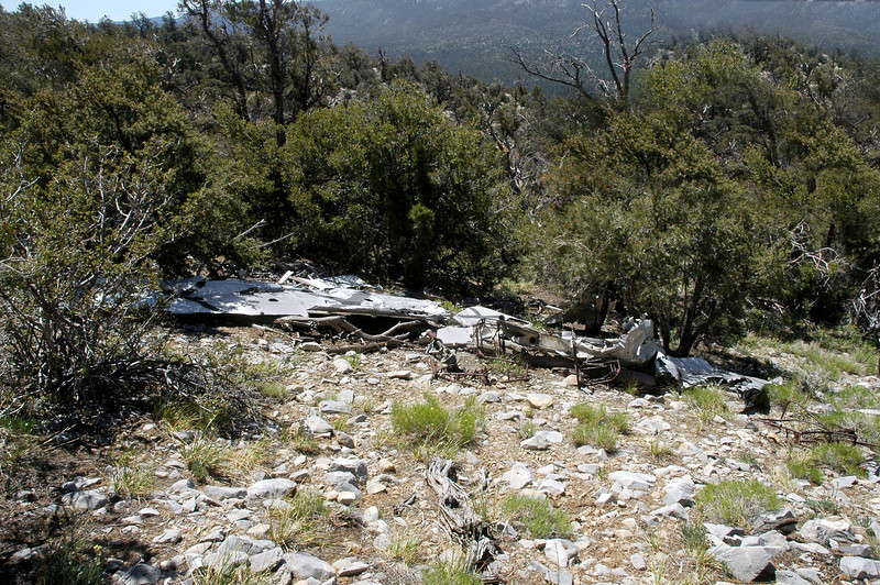 View of the crash site.