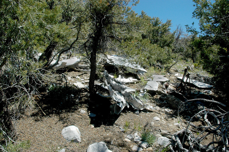 Another view of the crash site shows a piece from the fuselage at the base of the tree.