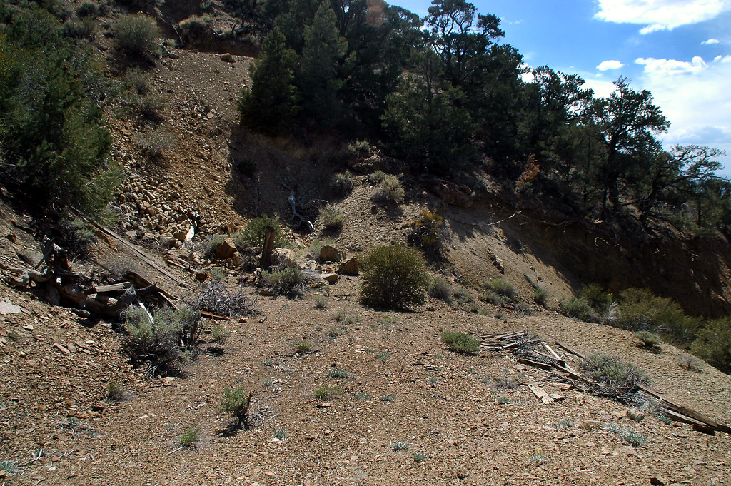 After driving about five miles on overgrown dirt roads, I reached the old mining site where the helicopter crashed.