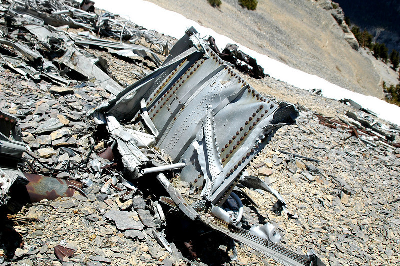 The wing section that the landing gear was attached to looked like part of the main spar's shear webbing.