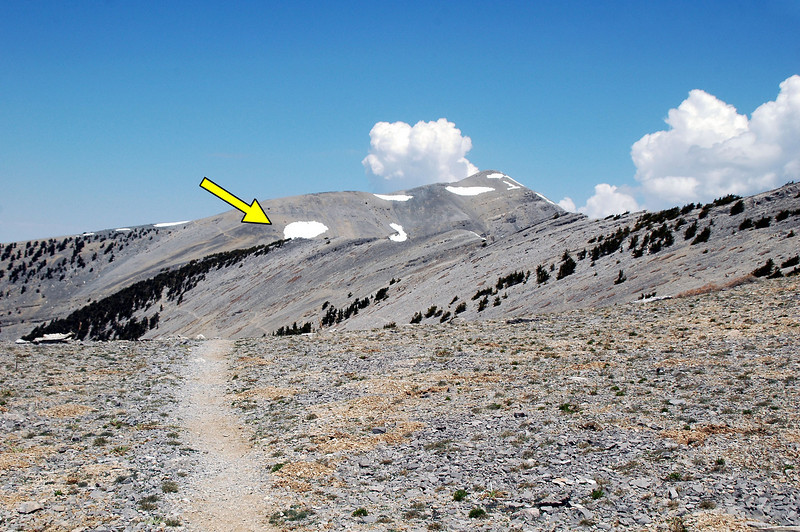 It took a long time, but finally we are approaching Charleston Peak. The crash site maked by the arrow is about 400 feet below the peak. This photo was taken from three quarters of a  mile away.