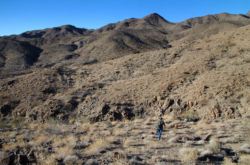 We wound up climbing in and out of a few canyons before we got on the ridge we followed to the peak.