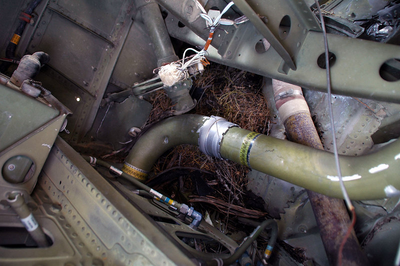 The hose is marked fuel vent. Another rat's nest.