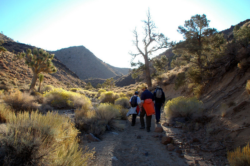 Starting off on the hike. First stop will be at the tail section of #158379.