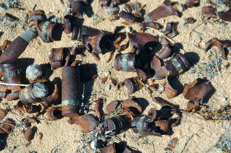 Most of the bullets were in fragments.