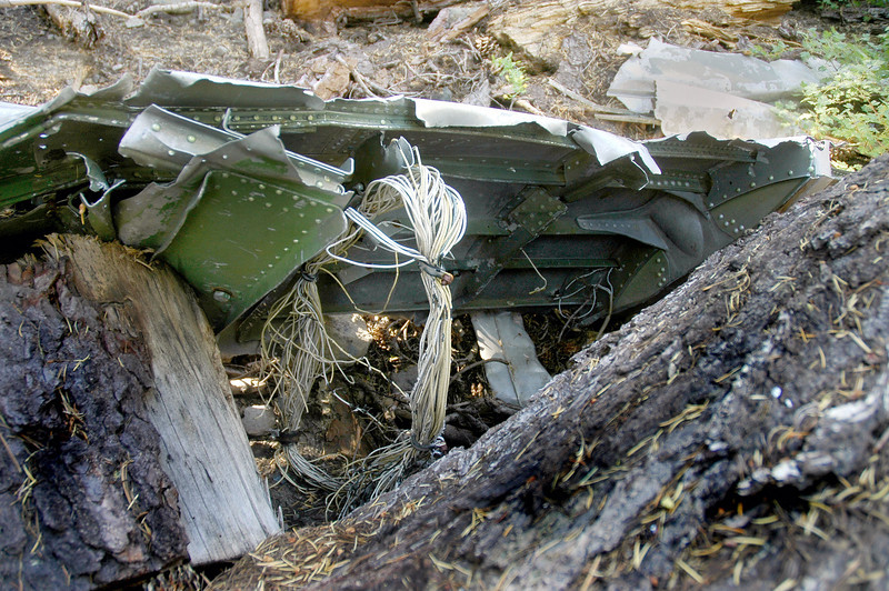 The same piece of fuselage had a wiring harness on it.