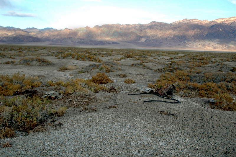 After searching for about an hour found this area that I believe is the main crash site of the B-24D #42-72862. The USAAF accident report stated that the remains of the bomber were dynamited and buried on the salt flat. Looks like some of it is starting to reappear.