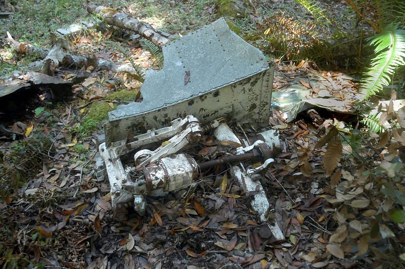 The upper part of one of the main landing gears with it's actuator still attached to a piece of the wing. The top of the gear leg can be seen on the right. It looks like the leg may still be there, buried in the dirt and leaves.