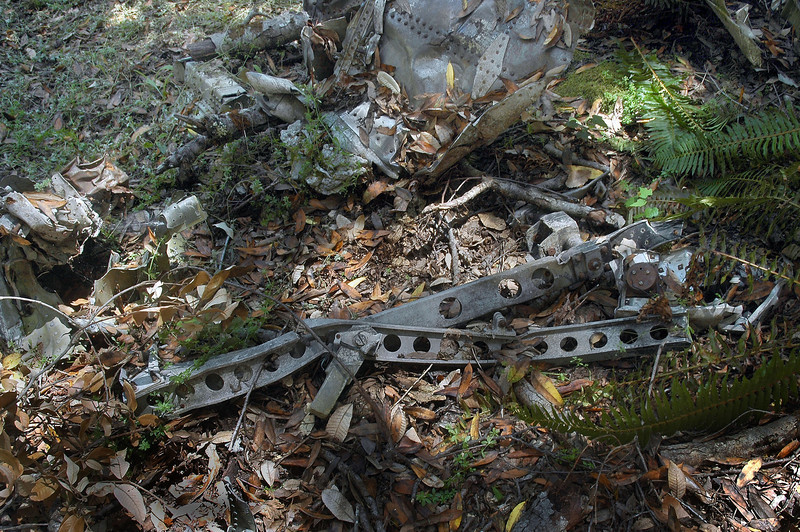Nearby were what looked like the tracks from the ejection seat. Unfortunately Lt. Wyley didn't eject after his Banshee struck the trees on the ridge that caused the plane to crash into the canyon.