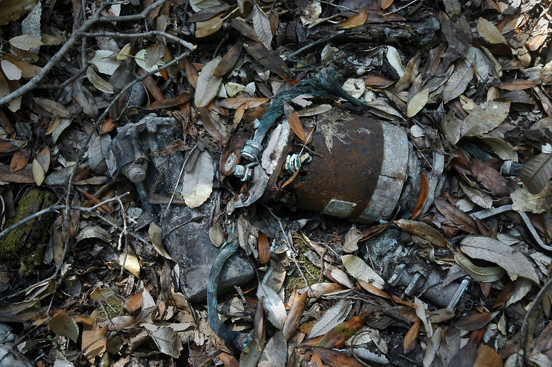 This looks like it might be the remains of a starter judging by the heavy gage wire attached to it.