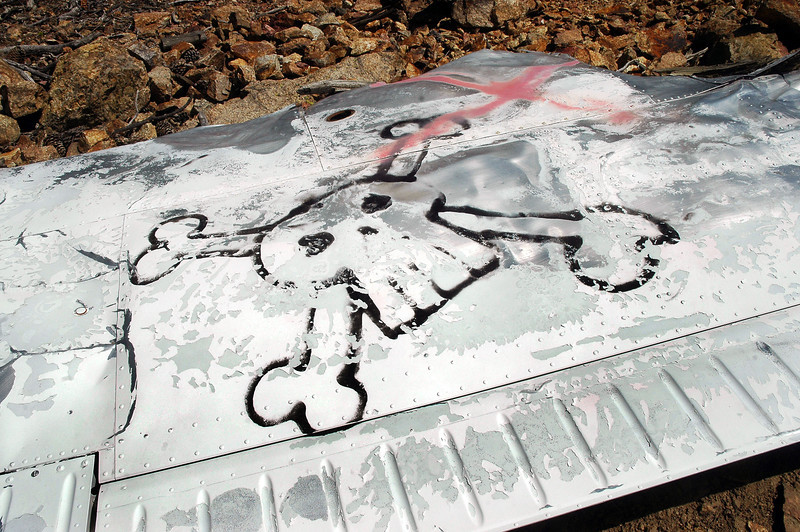 Close up of the skull and cross bones on the left wing. Looks like the red Xs were painted on after the graffiti was.