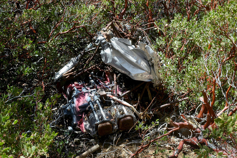 The engine was in the bushes just below the rest of the wreckage. The firewall and nose gear were still attached to the it.