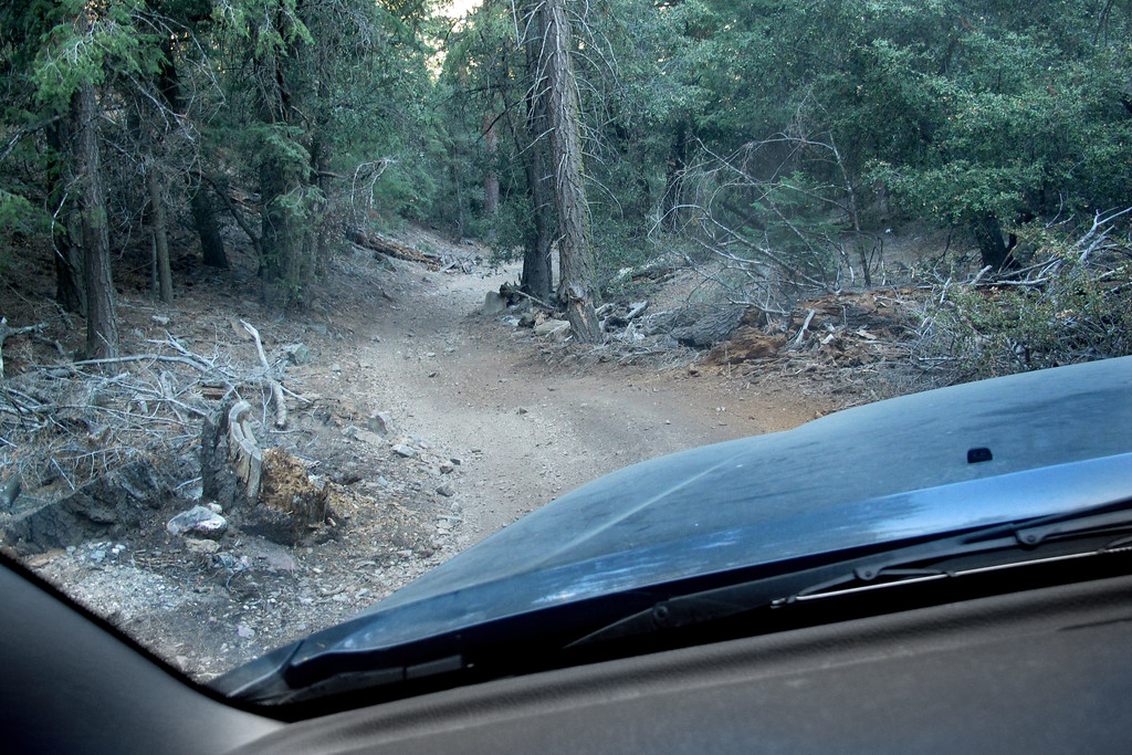 Driving down a steep narrow road into the area where I hoped the crash site was located. Was able to figure out the location from clues in newspaper articles and a report from the USFS.