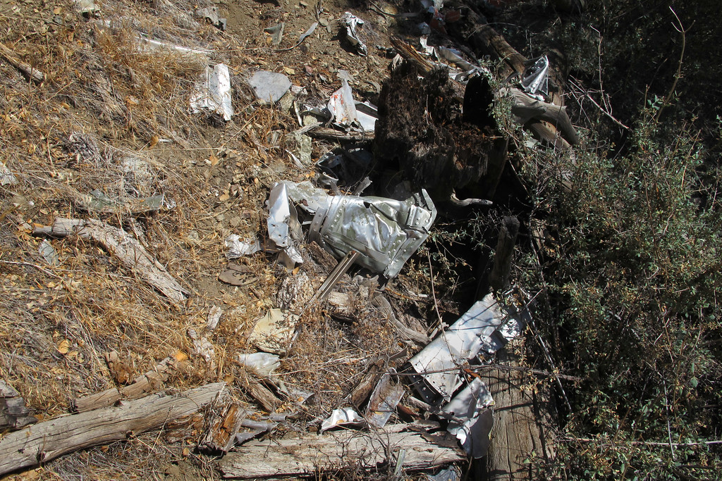 A lot of the pieces slid down the steep slope and collected up against a fallen tree.