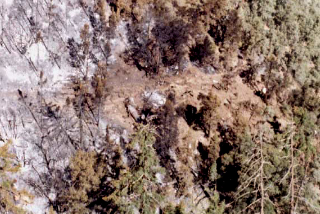 Aerial view of the crash site, photo from USFS report.