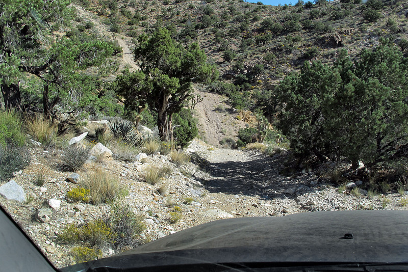 This is where to road turned to 4X4. Knew where I wanted to go, but wasn't sure that this was the right way to get there.