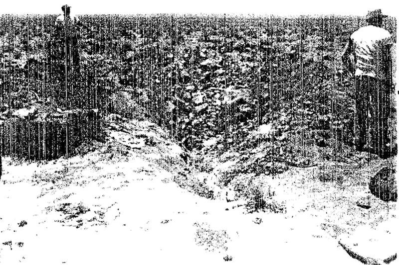 The F-104's impact crater.