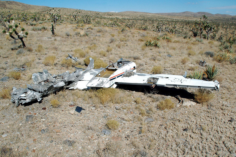 Turned out to be the right wing and a section of the burned out fuselage.