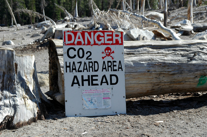 The Mammoth area has a lot of volcanic activity. Some of the trees around Horseshoe Lake were killed off by CO2 gas seeping up from the ground. This sign is warning about the CO2 danger in the area. CO2 is heavier than air, so it can build up when there's no wind.